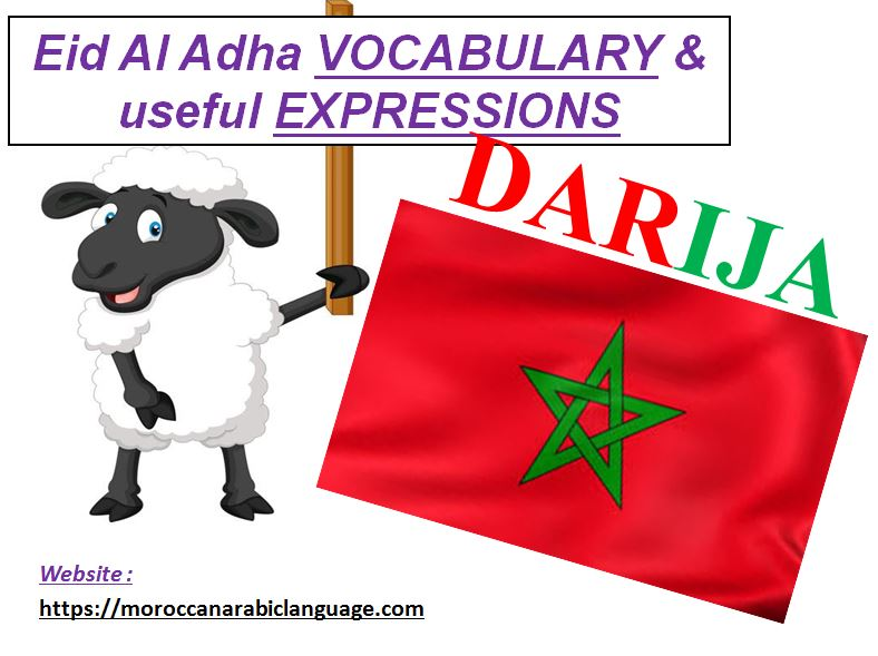 useful moroccan arabic vocabulary related to al adha celebration for muslims in morocco